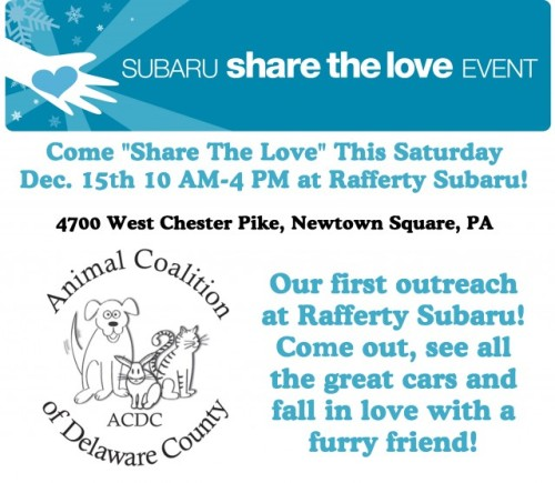 Share the Love Flyer